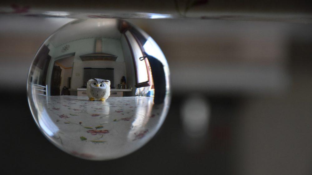anacleto at home4 - ruotata riflessa